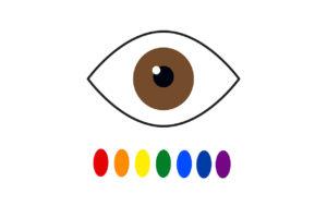 ¿Saps què és realment el daltonisme?