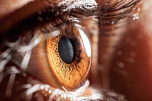 ¿Cuáles son las enfermedades oculares más comunes?